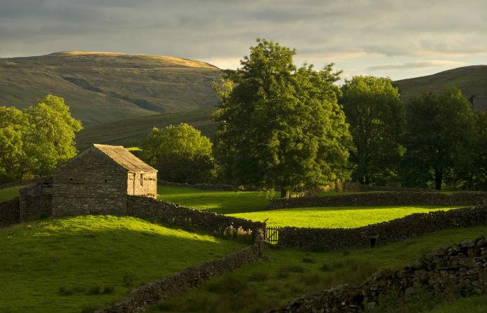 farmland-hills-swaledale