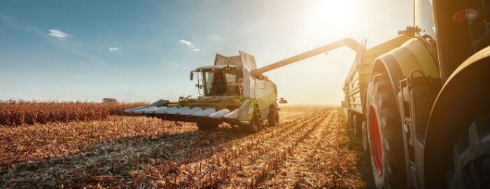 combine-harvester-field